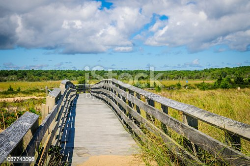 The South Cape Beach boardwalk in Mashpee, Massachusetts crosses the sand dunes  as it leads away from the shoreline.