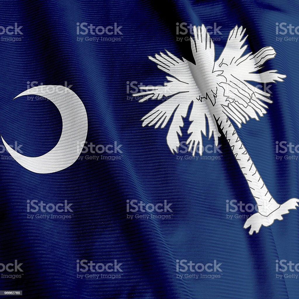 South Carolina Flag Closeup royalty-free stock photo