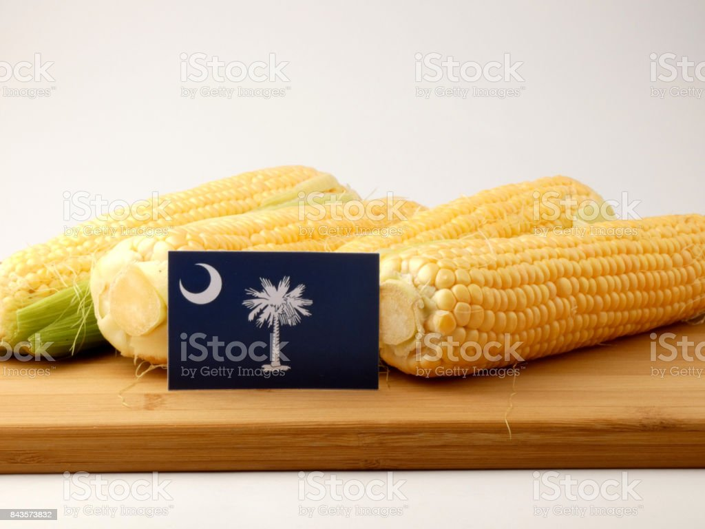 South Carolina flag on a wooden panel with corn isolated on a white background stock photo