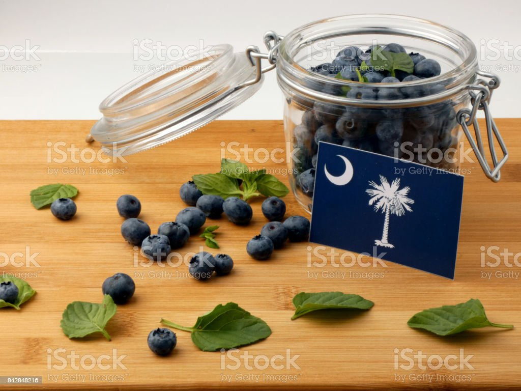 South Carolina flag on a wooden plank with blueberries isolated on white stock photo
