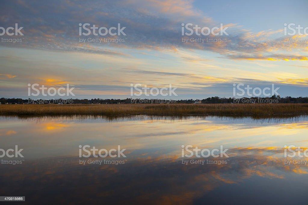 South Carolina Marsh. stock photo