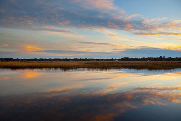 South Carolina Marsh. – Foto