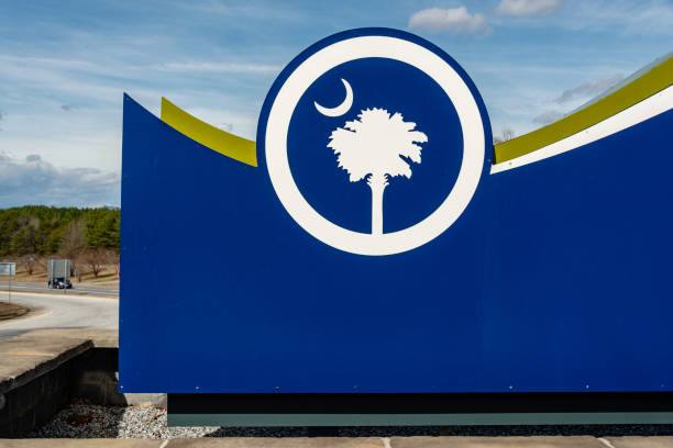 south carolina state flag - palmwedel stock-fotos und bilder