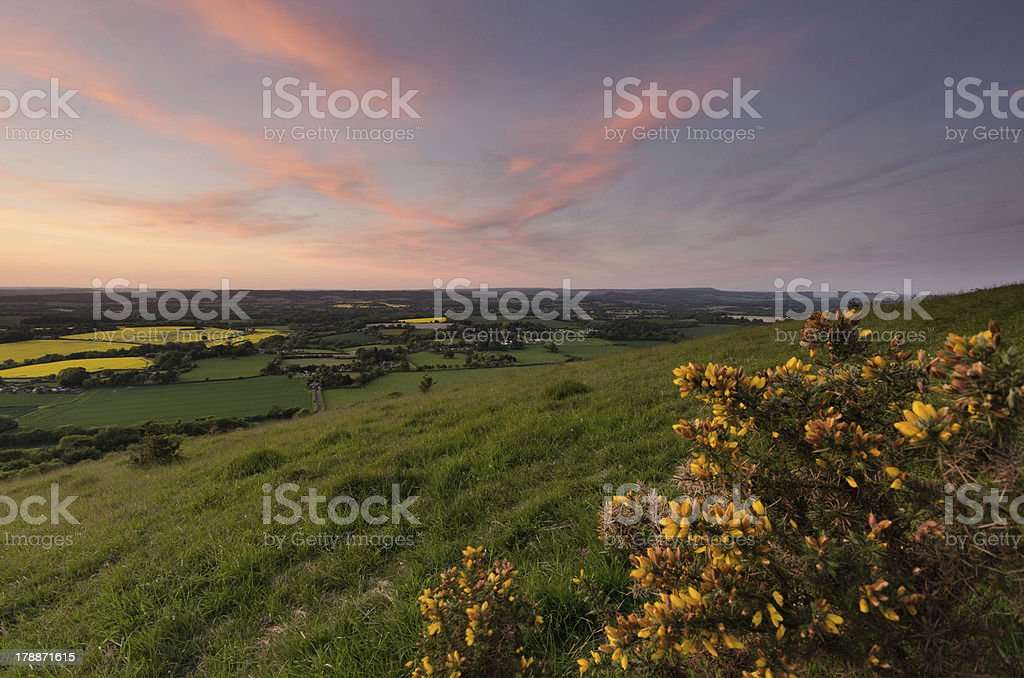 South Downs National Park Click to view more - Agricultural Field Stock Photo