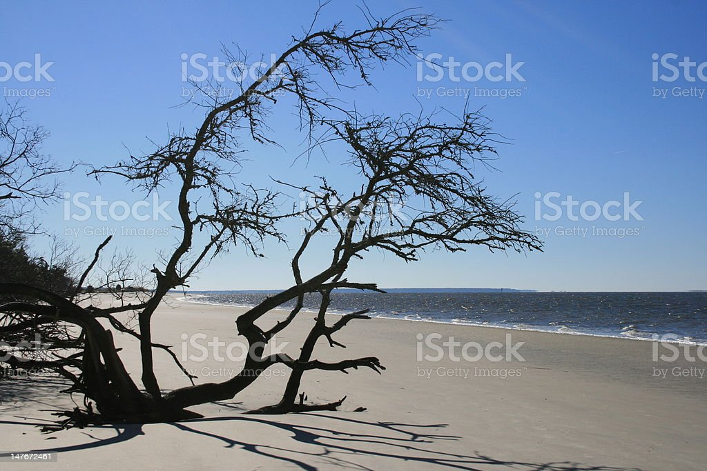 South End Jekyll Island royalty-free stock photo