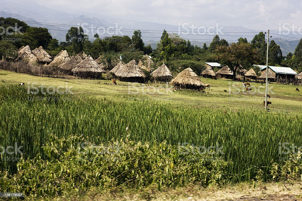 South ethiopian village with corn field stock photo