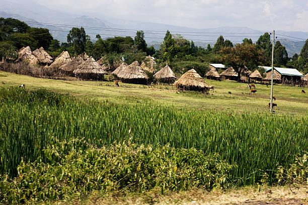 South Äthiopischer village mit corn field – Foto