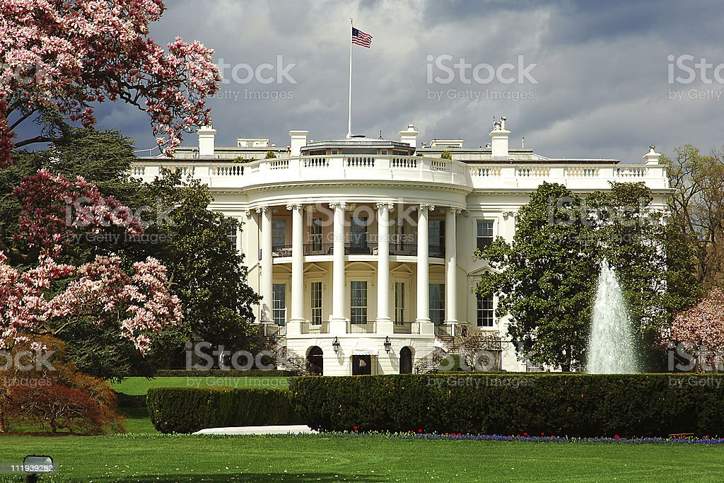 South façade of the White House with cherry blossoms. stock photo