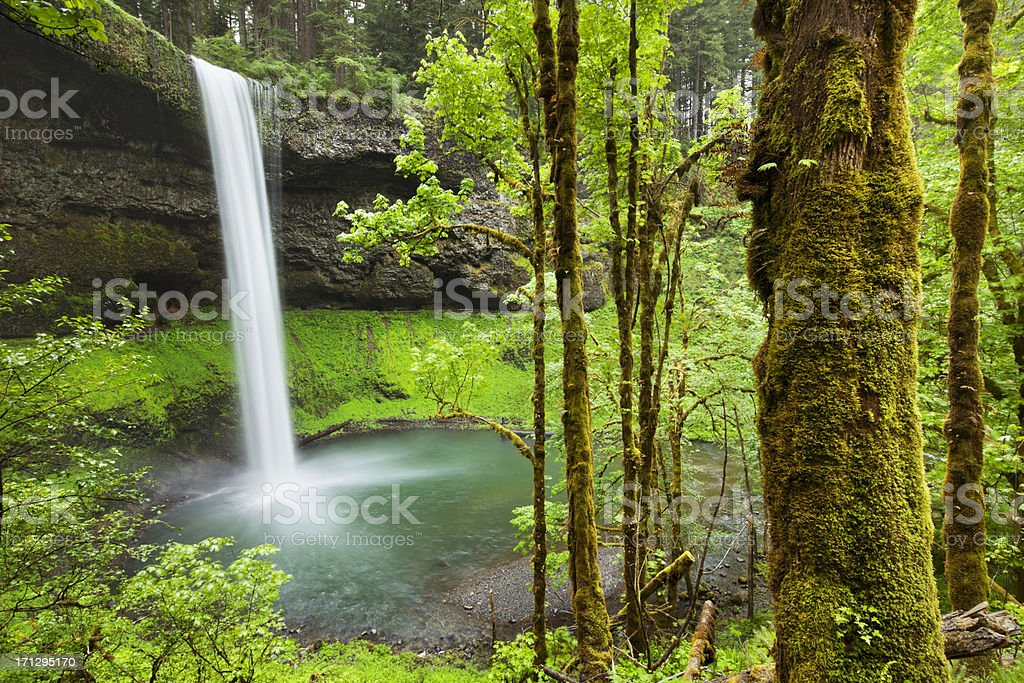 South Falls in the Silver Falls State Park, Oregon, USA stock photo