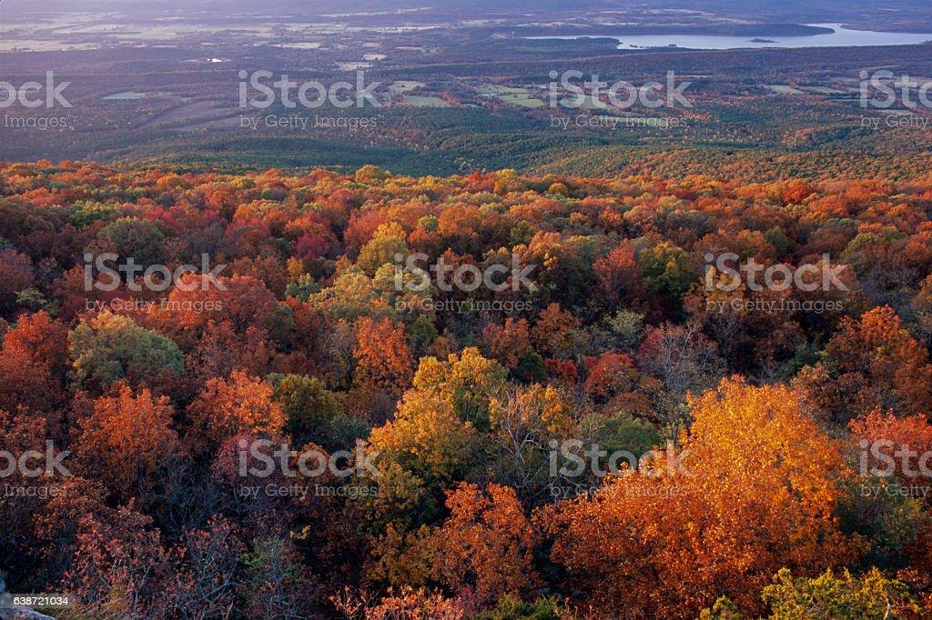 South Flank Forest, Sunrise, Mount Magazine, Arkansas stock photo