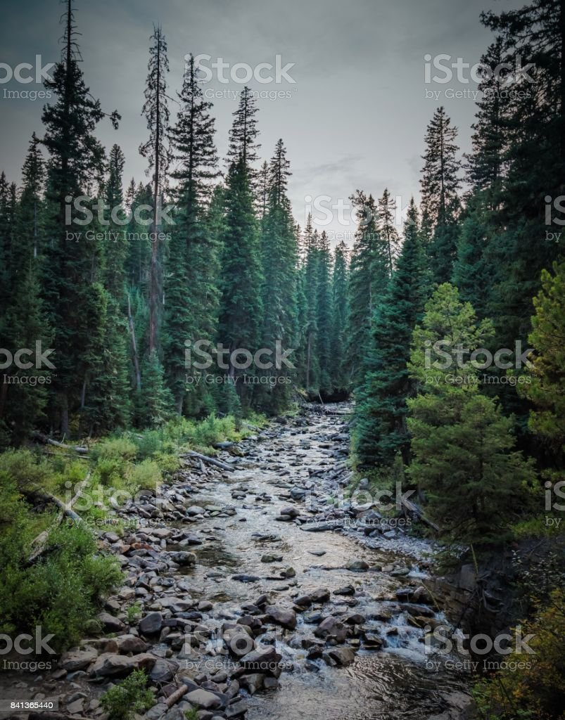 South Fork of the West Fork stock photo