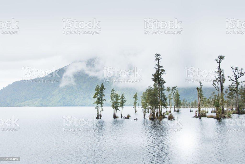 L'île du Sud Nouvelle Zélande lac et arbres - Photo