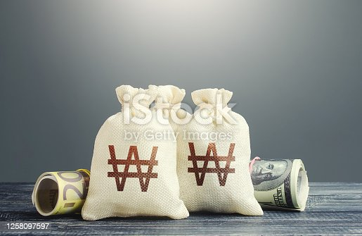 South korean won money bags and cash. National gold and foreign exchange reserve. Economy monetary policy. Financial resources, grants, project financing. Capital Investments. Trade development.