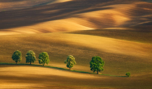 South Moravia.Czech Republic. Fields around town Kyjov. moravia stock pictures, royalty-free photos & images