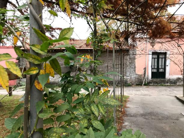south prado park in montevideo - herrenhaus grundrisse stock-fotos und bilder