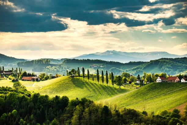 paisagem sul dos vinhedos da estíria, perto de gamlitz, áustria, eckberg, europa. opinião dos montes da uva da estrada do vinho na mola. destino turístico, ponto de viagem. - áustria - fotografias e filmes do acervo