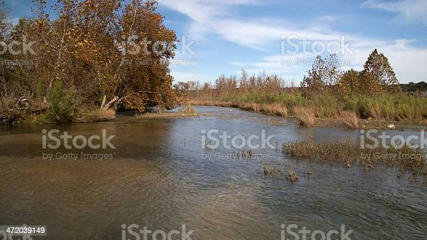 Photo of South Texas River