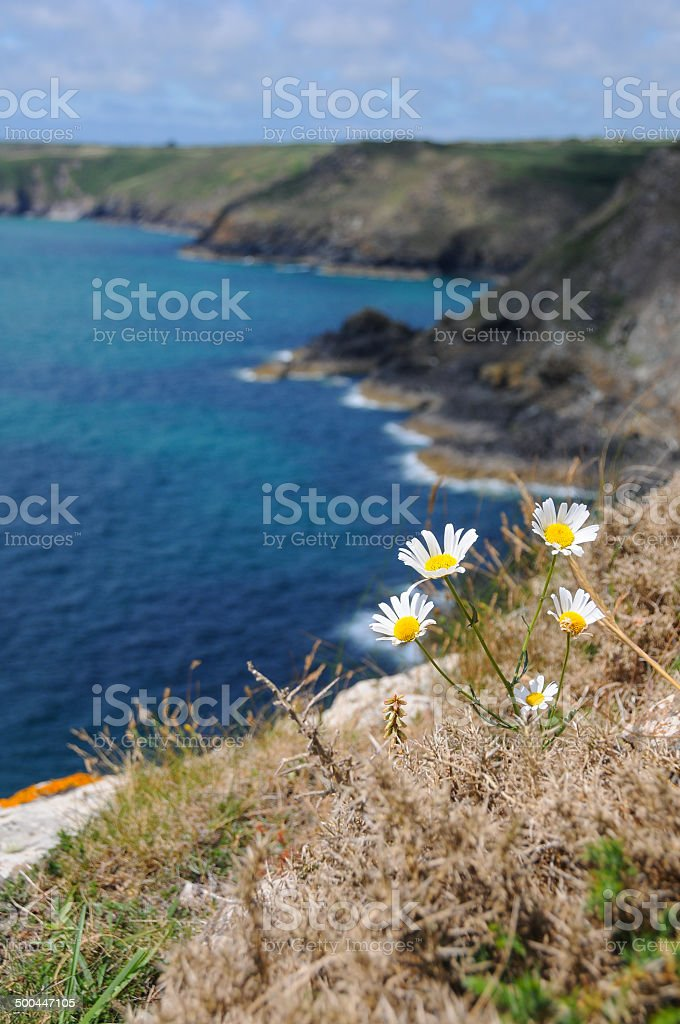 South West England. stock photo