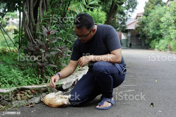 Southeast asia man playing with cat picture id1125589143?b=1&k=6&m=1125589143&s=612x612&h=te6lewhwez2 o 5cve5tz mcnxy kaael1nc6ji4ura=