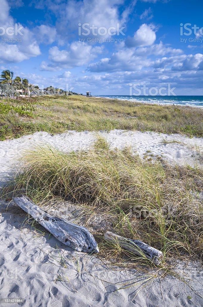 southeast florida coast stock photo