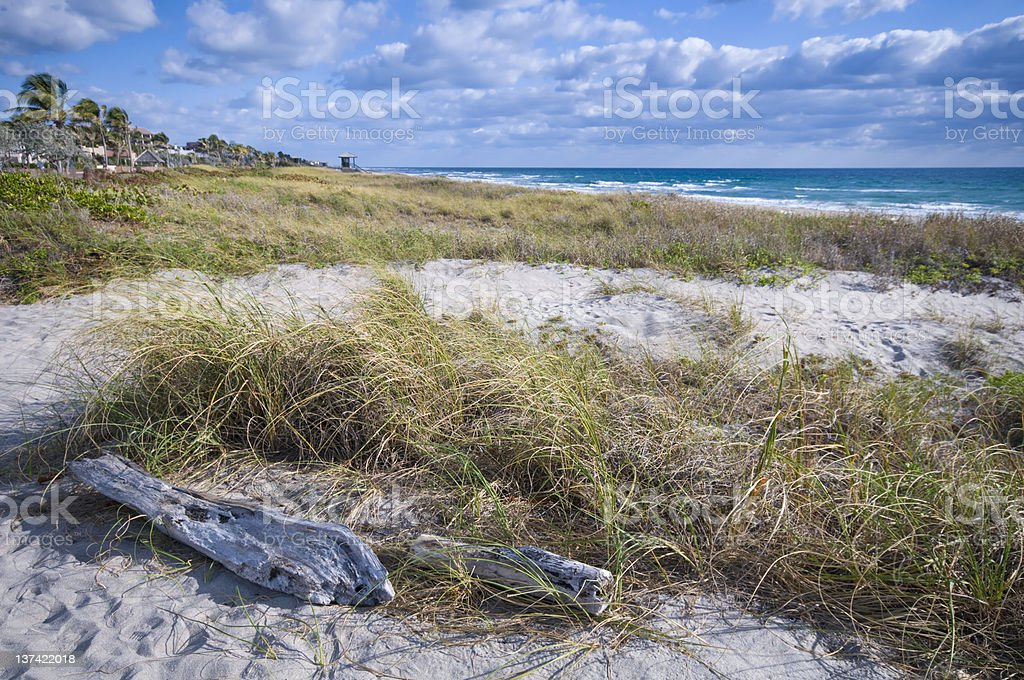 southeast florida coastline stock photo