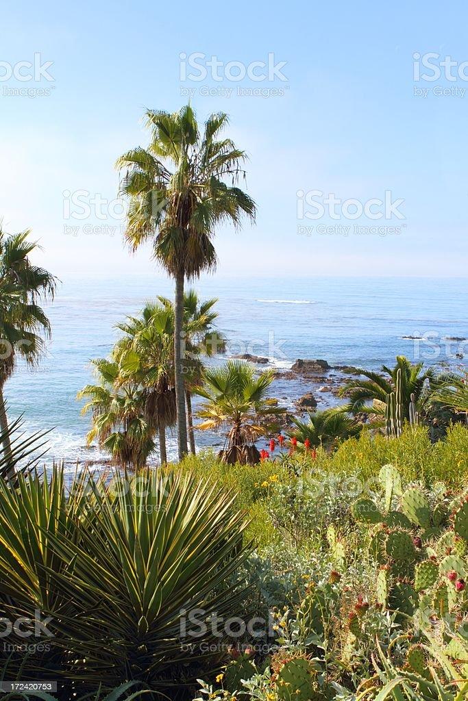 Southern California Coastline royalty-free stock photo
