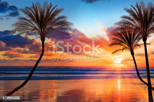 Backlit palm trees and sandy beach fills the foreground leading back to dramatic sunburt sunset and cloudscape; Southern California