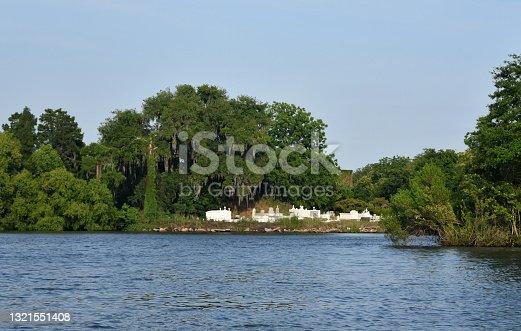 istock Southern Louisiana Bayou Landscape 1321551408