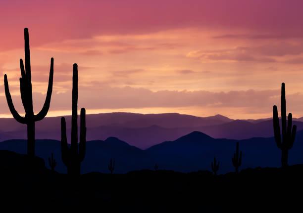 southwest arizona desert - stan arizona zdjęcia i obrazy z banku zdjęć