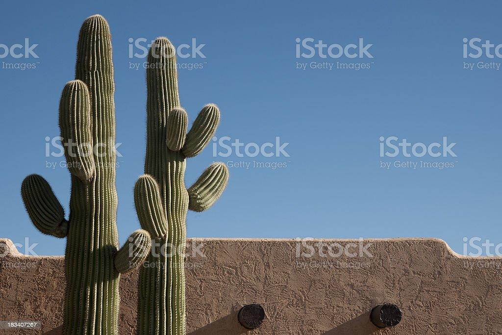 Southwest Delight stock photo