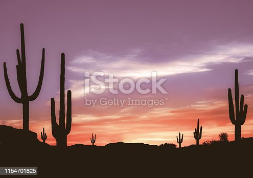 Aged Colorful Sunset in Wild West Desert of Arizona with Cactus