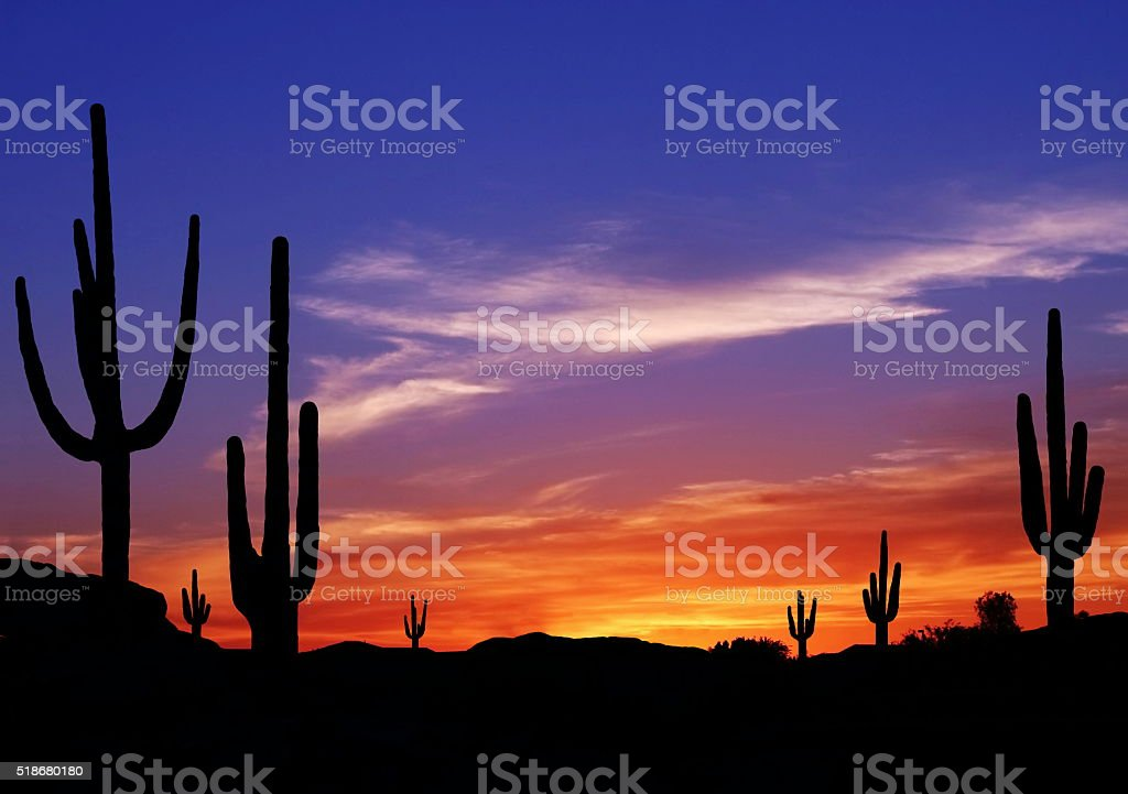 Southwest Desert stock photo