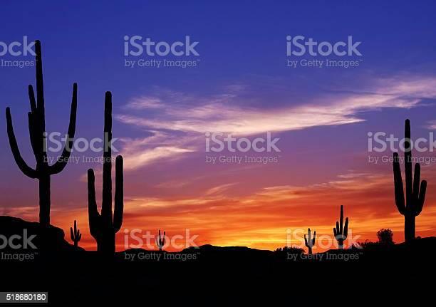 Photo of Southwest Desert