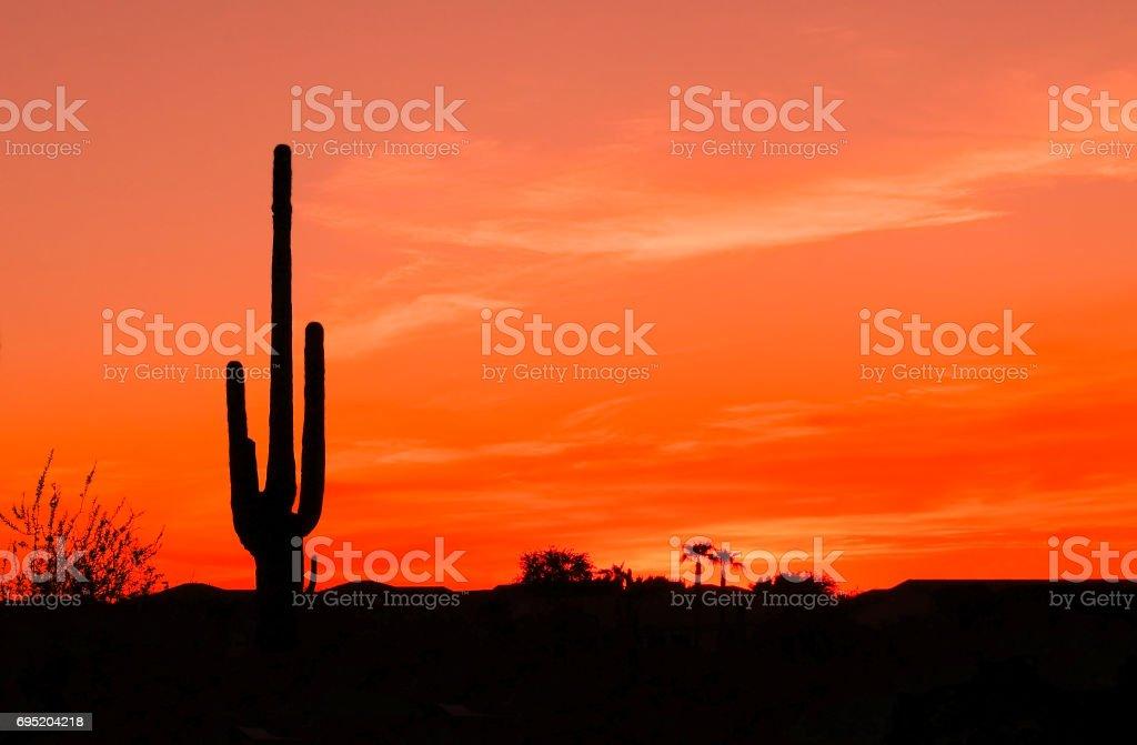 Southwest Desert Sunset stock photo