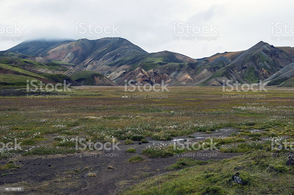 Südwest-Island - Landmannalaugar stock photo
