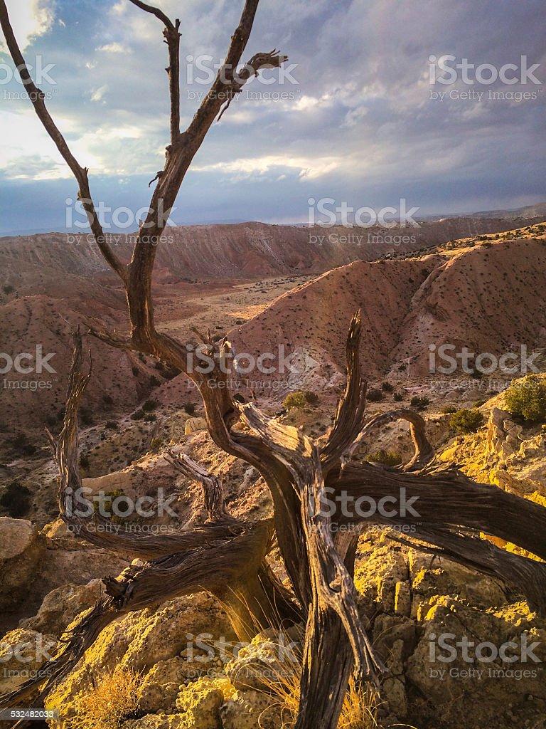 southwest landscape stock photo