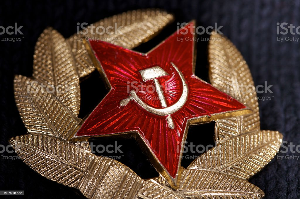 Soviet badge with red star, hammer, sickle and laurel wreath.