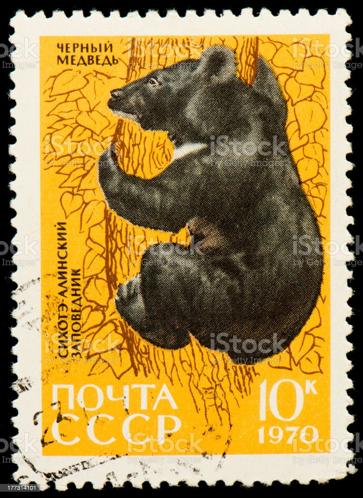 Soviet postage stamp with a picture of Asiatic Black Bear stock photo
