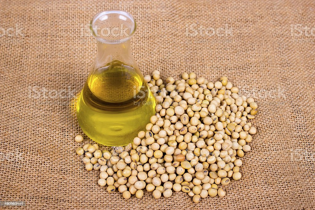 Soy bean and oil stock photo