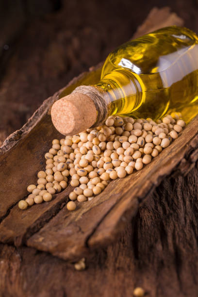 Soy bean and soy oil on wooden table. Selective focus stock photo
