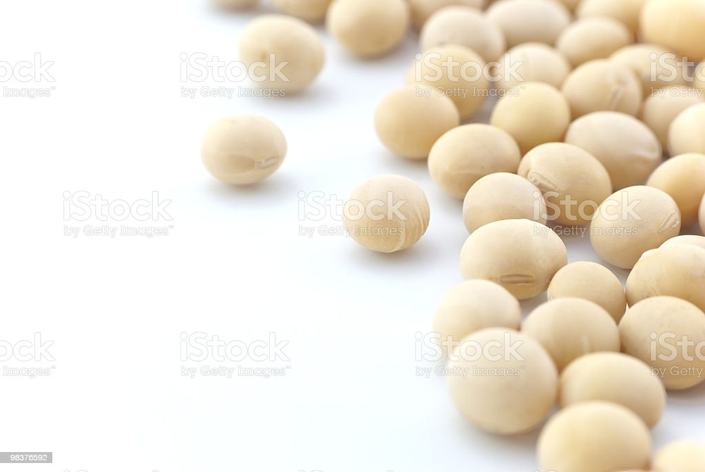 Soya Beans  Close up - Isolated royalty-free stock photo
