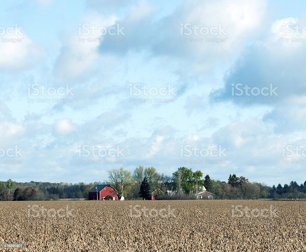 Soybean field and farm buildings in central Wisconsin royalty-free stock photo