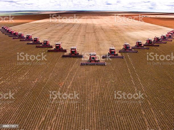 Sojabohnen Harvest Stockfoto und mehr Bilder von Sojabohne
