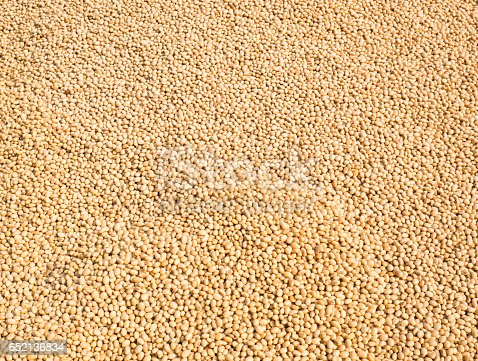 istock Soybean seed texture background 652136834