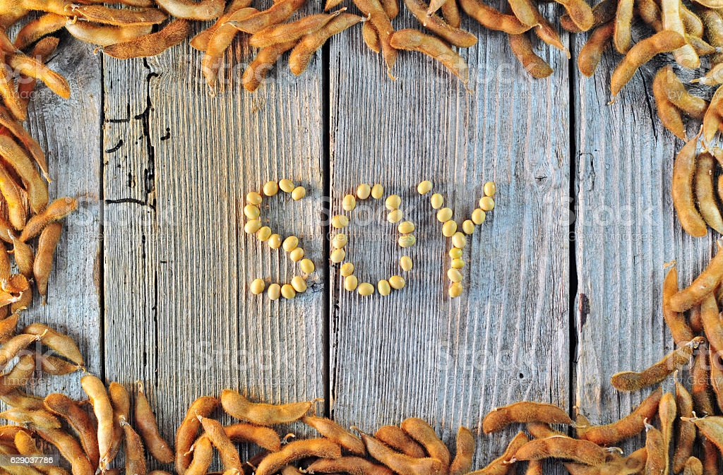 Soybean seeds on a wooden table – Foto