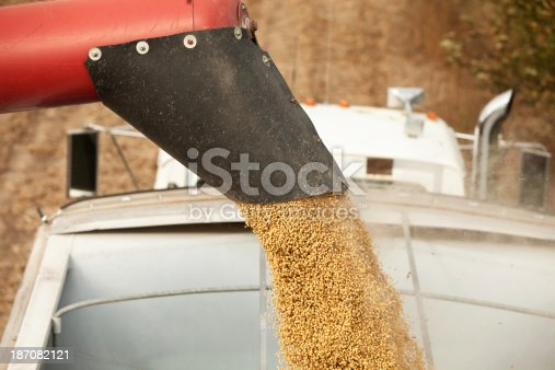 Freshly harvested soybeans are being offloaded from a combine, falling from an auger, into a grain truck.http://www.banksphotos.com/LightboxBanners/AgFarming.jpg