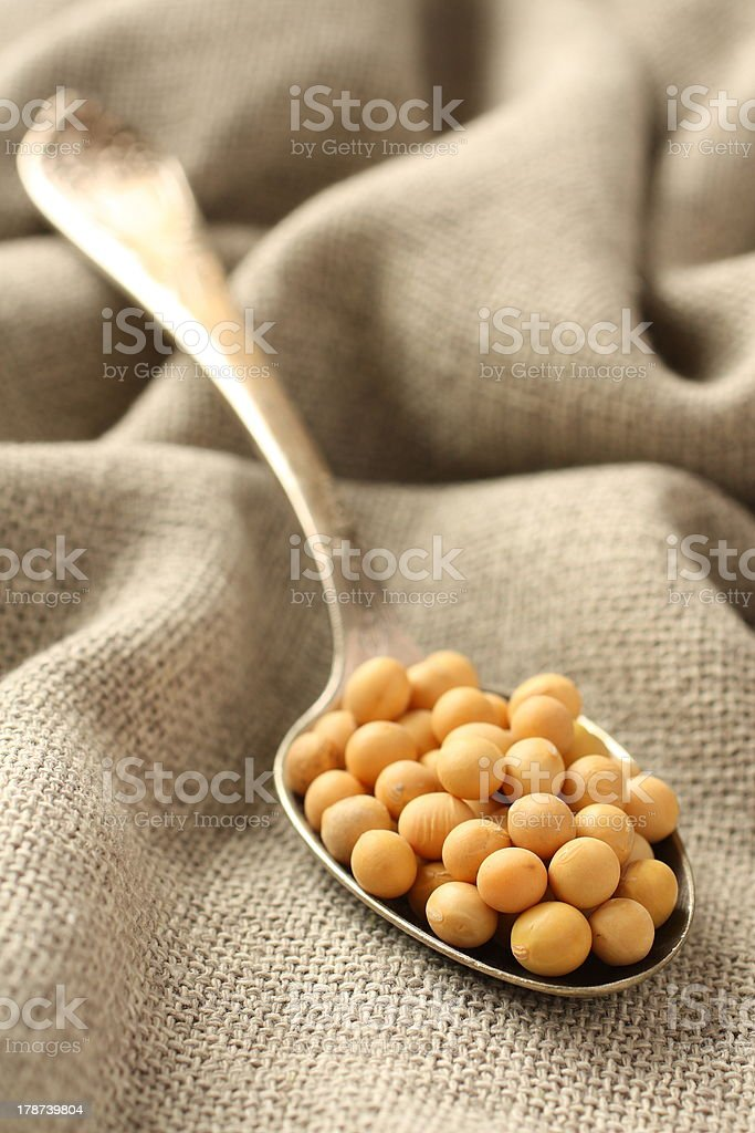 Soybeans in metal spoon on sackcloth background royalty-free stock photo