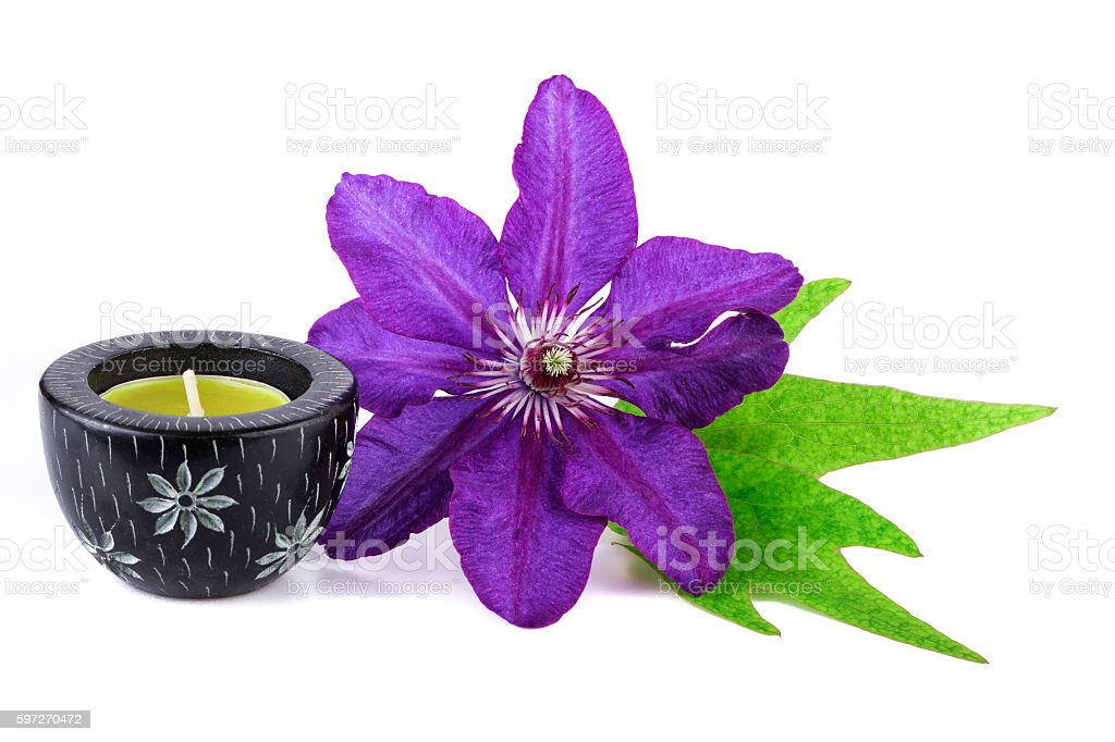 Spa concept Tropical Flower with Candle royalty-free stock photo