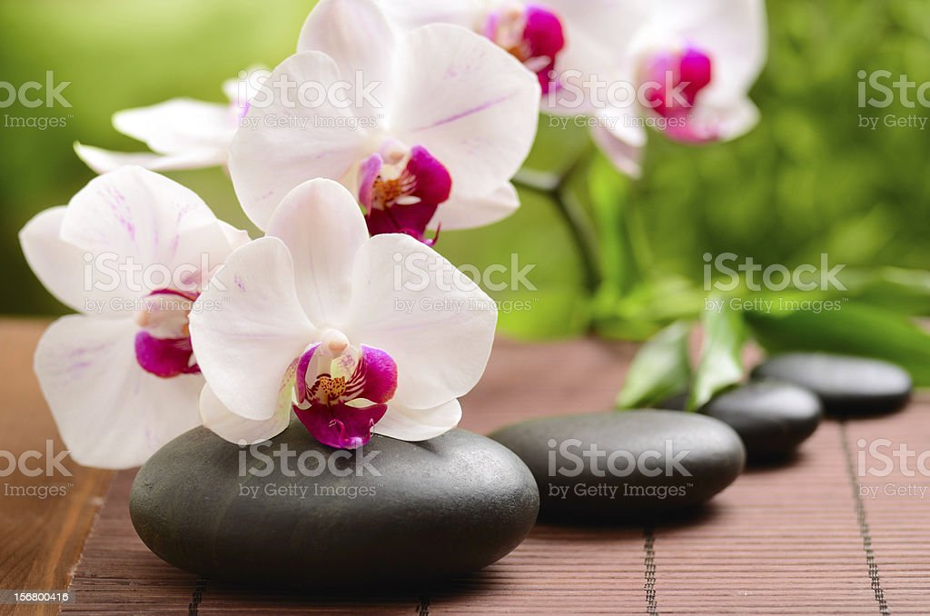 Spa concept with beautiful flowers and soothing stones stock photo