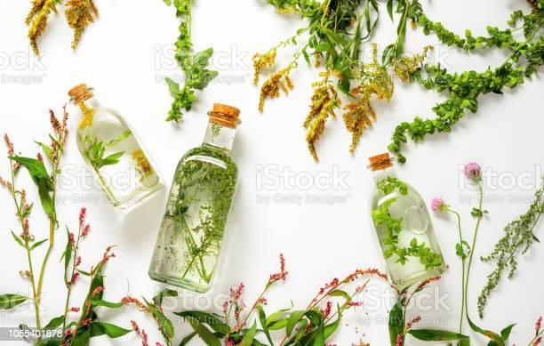 Spa herbal infusions picture id1055401878?b=1&k=6&m=1055401878&s=612x612&h=0w5dedbdmhnlqz1 33ibfclmtxk7cn8obfd3ejdivdw=
